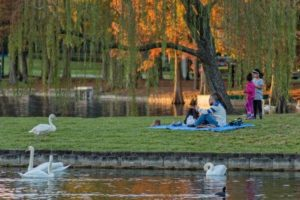 7 Orlando Parks for You to Discover