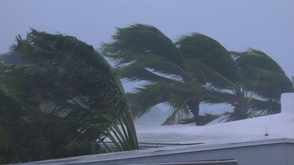 6 Tips For Preparing Your Home For Hurricane Season